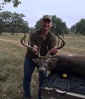 David's Buck