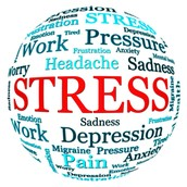 More Information About Stress