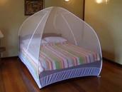 a bed net