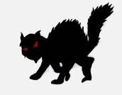 black cat symbol