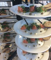 Salmon starters waiting to go