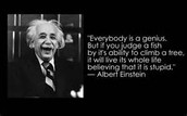 Mr. Einstein's Take on Learning Disabilities