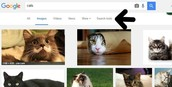 4.  Click on Search Tools