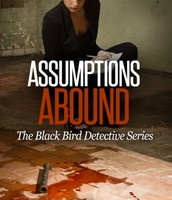Assumptions Abound by Sage