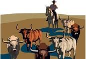 Wrangling the Herd