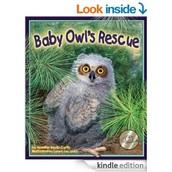 Baby Owl's Rescue by Jennifer Keats Curtis