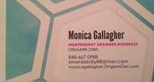 Oragami Owl - Monica Gallagher - Friends of Cambridge