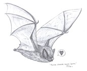 This is a sketch of a bat.