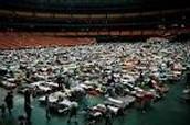 The Super Dome
