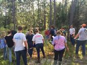 Forestry Judging CDE