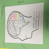 My Brain Hemisphere
