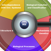 DYNANOTES Biology Spin the Wheel