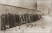 Jews Lined up Against the Wall
