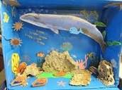 Whale Diorama