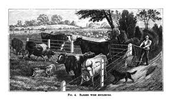 Barbed Wire Uses for Ranches in Texas