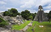 El Parque Nacional (Tikal National Park)