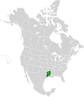 Location of The Piney Woods