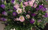 Campanula Fresh Flower Bouquet $49.95
