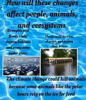 How Will These Changes Affect People, Animals, and Ecosystems