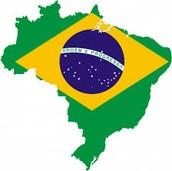 Brazil's Economy Bio.