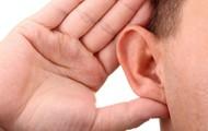 Ears...hears(10-11)