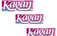 Kagan Coooperative Learning