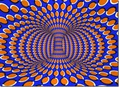 How Optical Illusions Trick The Brain