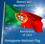 Brief History of Flag