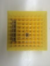 7.שם השיטה : בדיקת ריכוז החלבון בשיטה ספקטרופוטומטרית עם ריגאנט ברדפורד.