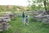 Zig zag fences protecting a garden