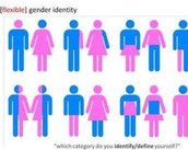 Where to go for more information on Gender Identity.