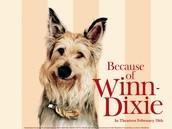 Read Because of Winn-Dixie