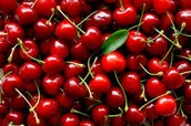 Cherries                                                   +