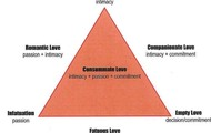 the say what triangle