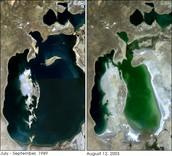 Araali meri 1989- 2003