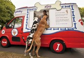 Look for Dutch's Treats Wagon at a dog park near you.