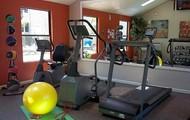 Fabulous Fitness Center!