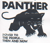 Who were the Black Panthers?