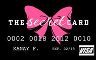 Victoria Secret Credit Card.