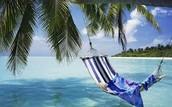 Live on a beach