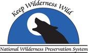 NWPS Logo