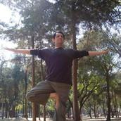 Las posturas son sólo el principio en el camino hacia el yoga. Patanjali