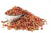 Cat Or Dog Food