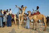 Who where the Berbers?