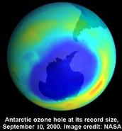 It's the biggest it's ever been in Antarctica