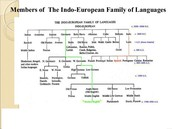 Languages within the Indo-European tree