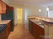 Designer Kitchens with Beautiful LIghting