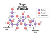 Some others facts about sugar
