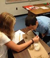 6th Grade: Scientific Method
