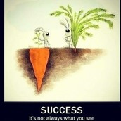 Look for success below the surface